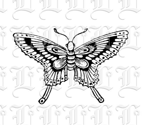 Line Quality In Art : Butterfly victorian insect line drawing clip art printable