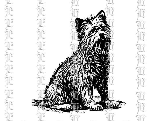 Dog terrier black and white illustration vintage graphic